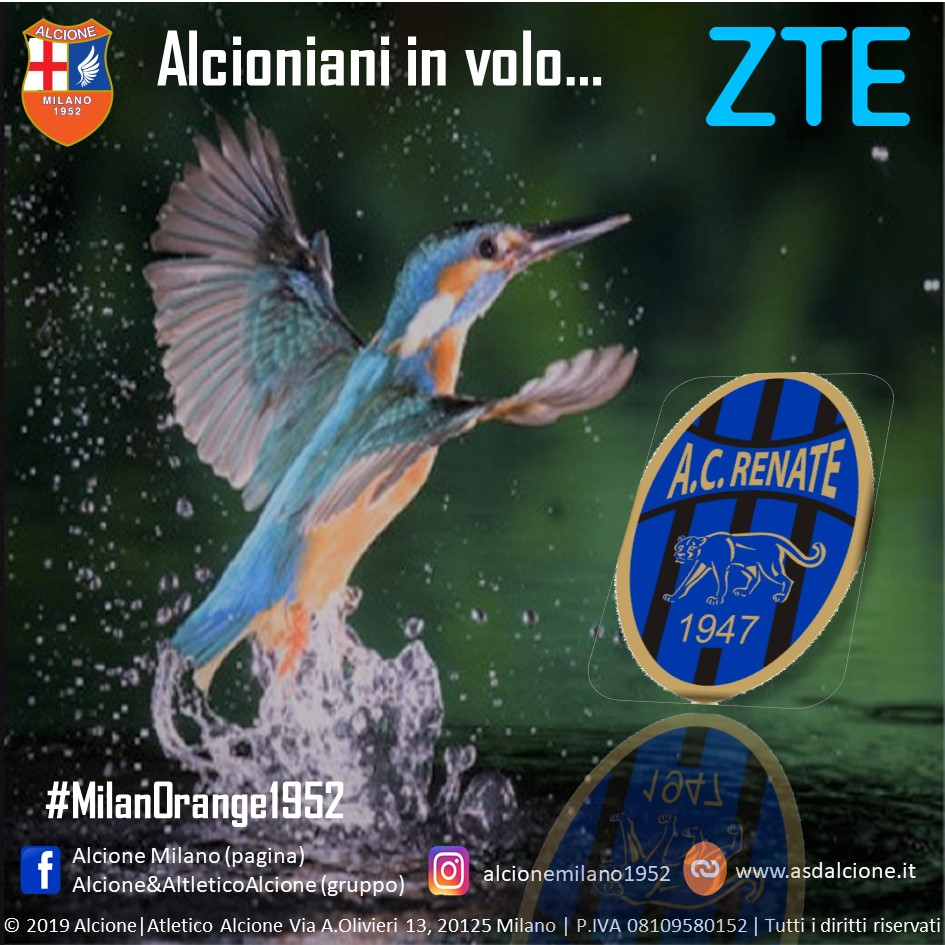 Alcioniani in Volo RENATE 2020